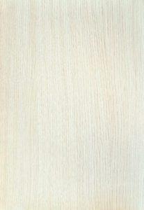 Дуб-белый-036